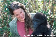 singe et homme