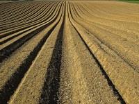 Les sols et les nouveaux enjeux de l'agriculture