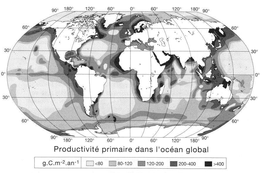 productivite_oceanique