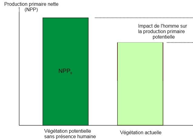 Différentiel entre la végétation potentielle et la végétation actuelle