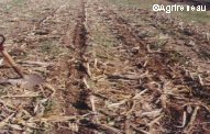 TP niveau seconde: Influence de l'Homme sur l'évolution des sols