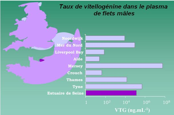 graphe taux vitellogenine.jpg