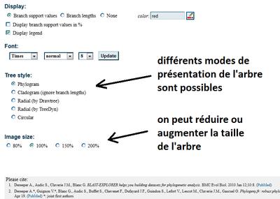 Modifier la présentation d'un arbre avec phylogeny.fr_2