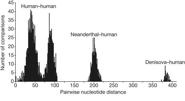 Séquences-hommes-neandertaliens.jpg
