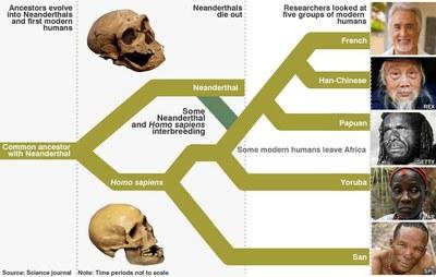 neanderthal-human-relations.jpg