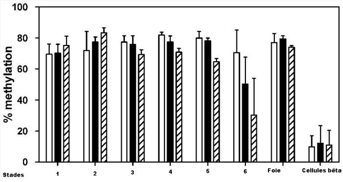 Différentiation cellules souches.jpg
