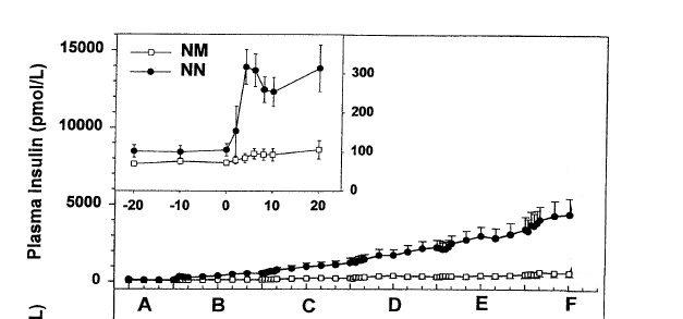 Insulinémie Clamp-New.jpg