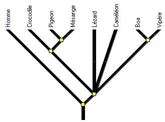 arbre_diapsides_noir.jpg