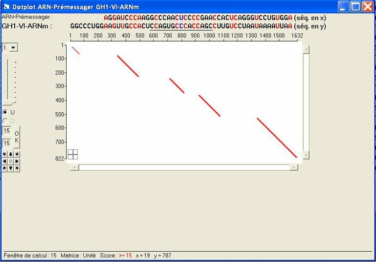 DotPlot-Variant1.jpg
