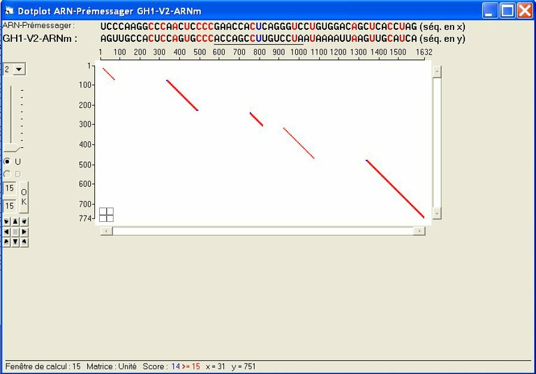 DotPlot-Variant2.jpg