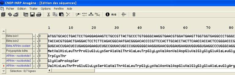 Suppression de nucléotides.jpg