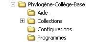 Dossier-Phylogène.jpg