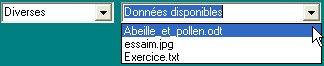 DocsDivers.jpg