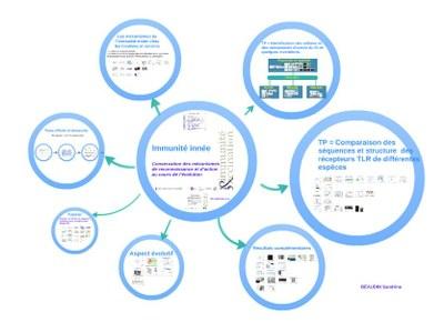 Presentation prezi2.JPG