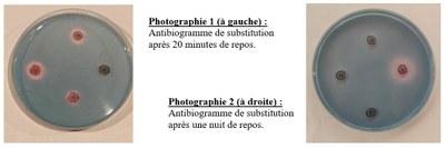 Antibiogrammes réalisés.JPG