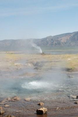sources chaudes du lac bogoria