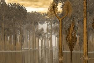 forêt carbo1.jpg