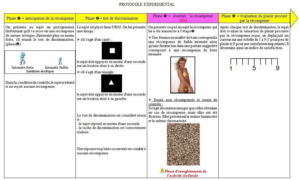 Protocole expérimental simplifié