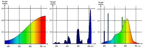 spectresDivers.jpg