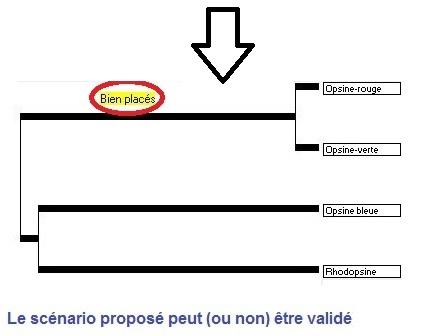 pigments_De_Visu_étape3