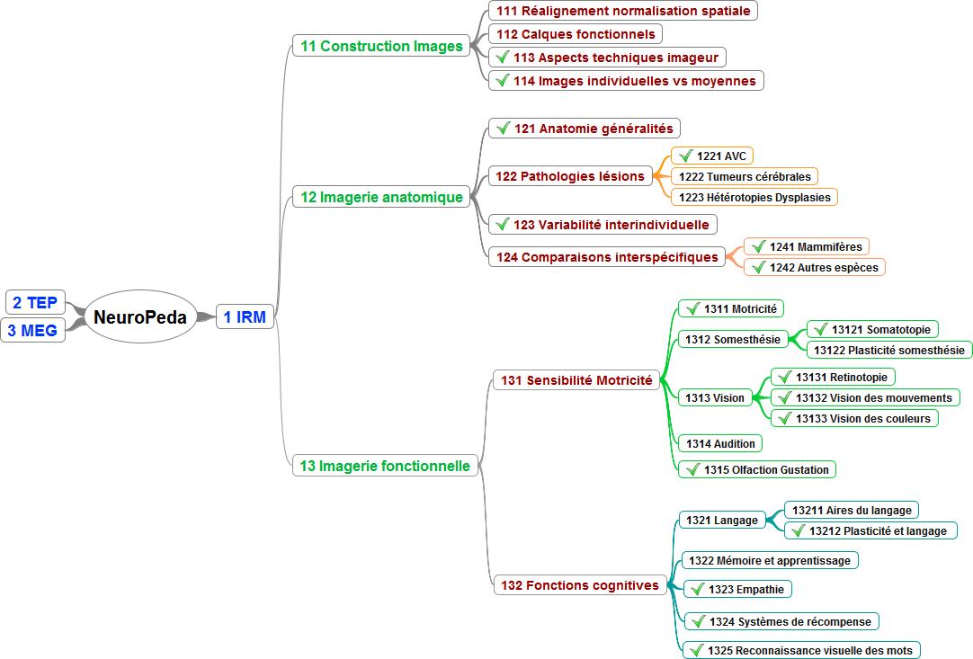 Architecture de la banque de données NeuroPeda