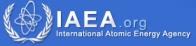 iaea_org_logo_new.jpg