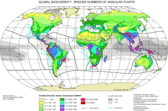 biodiversite vegetale.jpg