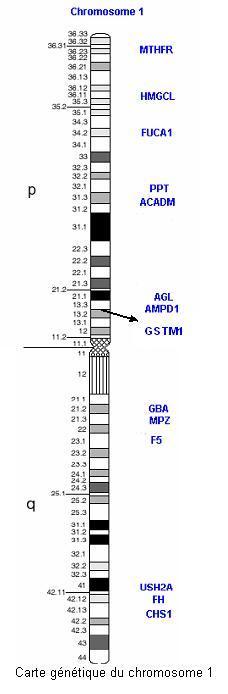 chromos1carte.jpg