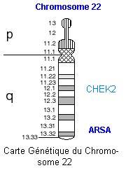 chromos22carte.jpg