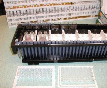 Sur cette image, d'avant en arrière: les puits permettant le contact serum/réactifs, le bac contenant les réactifs et les prélèvements étiquetés.