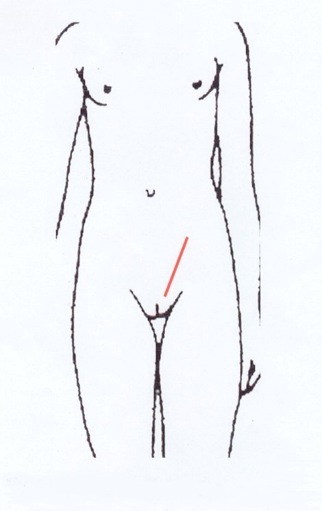 Taille moyenne du sein d'une femme