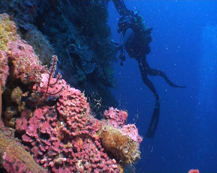 paysage sous marin - pente