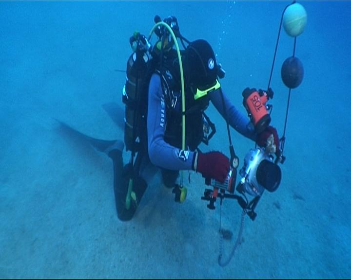 Acquisition d'images par les plongeurs (in situ)