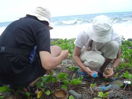 collecte sur la plage - Laure et Tony