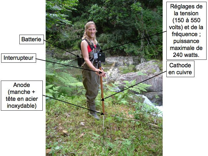 Description de l'appareil de pêche